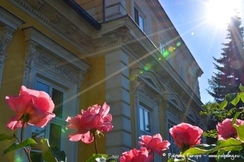 007-©-Palpung-Europe-www.palpung.eu
