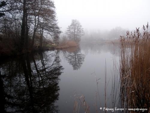 019-©-Palpung-Europe-www.palpung.eu