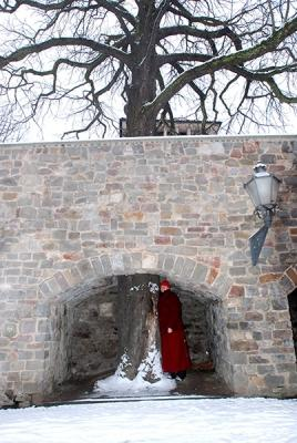 042-©-Palpung-Europe-www.palpung.eu