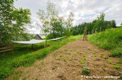 034-©-Palpung-Europe-www.palpung.eu