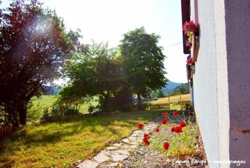 062-©-Palpung-Europe-www.palpung.eu