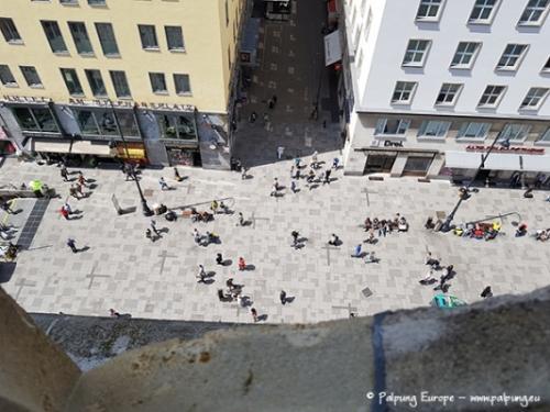 024-©-Palpung-Europe-www.palpung.eu